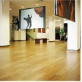 Bamboo Floor horizontal natural